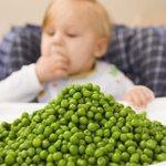 2-30328-finger-foods-for-10-month-old-kidsc-1357768738